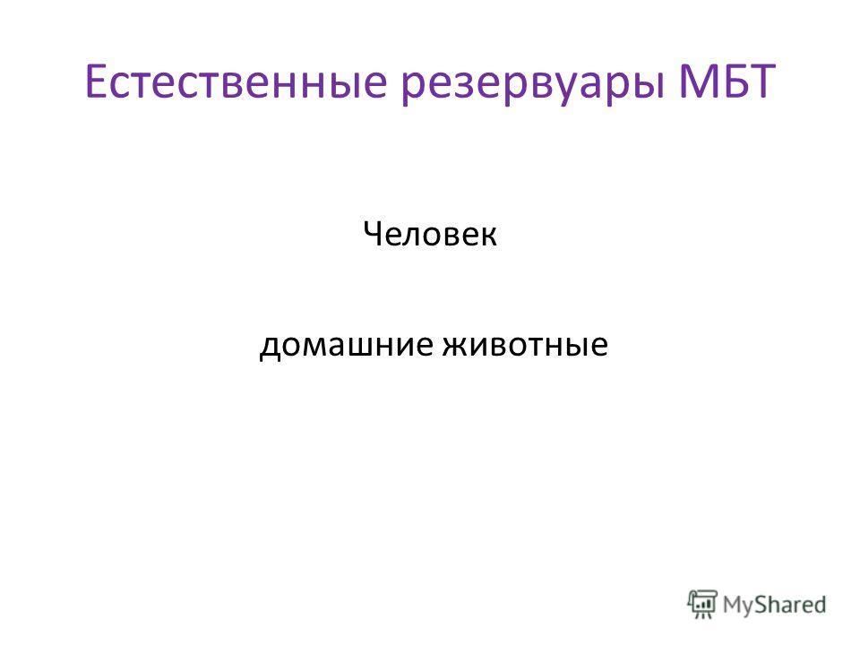 Естественные резервуары MБT Человек домашние животные