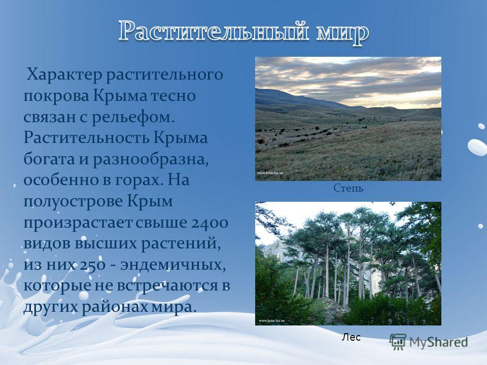 Характер растительного покрова Крыма тесно связан с рельефом. Растительность Крыма богата и разнообразна, особенно в горах. На полуострове Крым произрастает свыше 2400 видов высших растений, из них 250 - эндемичных, которые не встречаются в других ра