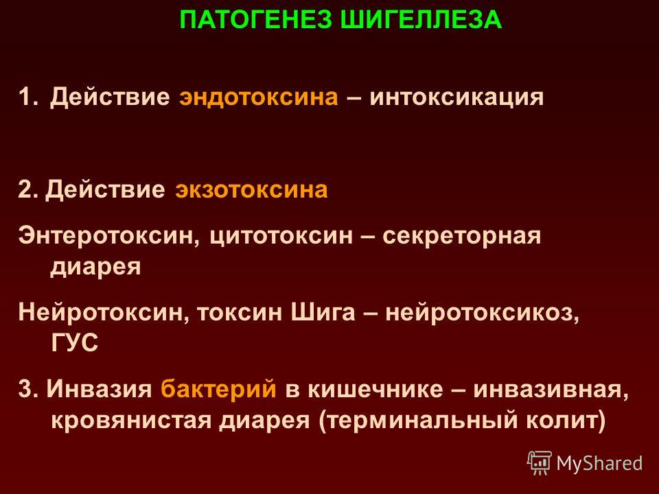 Возрастная структура заболеваемости дизентерией Зонне в Республике Беларусь