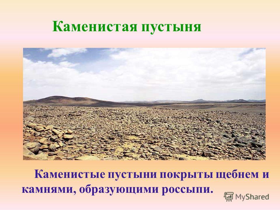 Каменистая пустыня Каменистые пустыни покрыты щебнем и камнями, образующими россыпи.