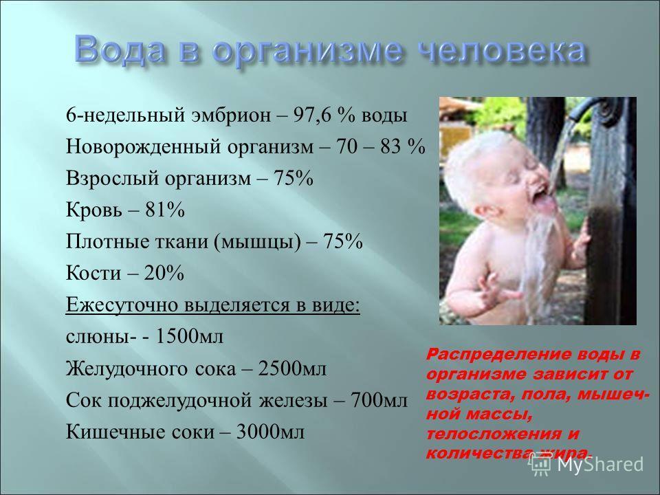6- недельный эмбрион – 97,6 % воды Новорожденный организм – 70 – 83 % Взрослый организм – 75% Кровь – 81% Плотные ткани ( мышцы ) – 75% Кости – 20% Ежесуточно выделяется в виде : слюны - - 1500 мл Желудочного сока – 2500 мл Сок поджелудочной железы –