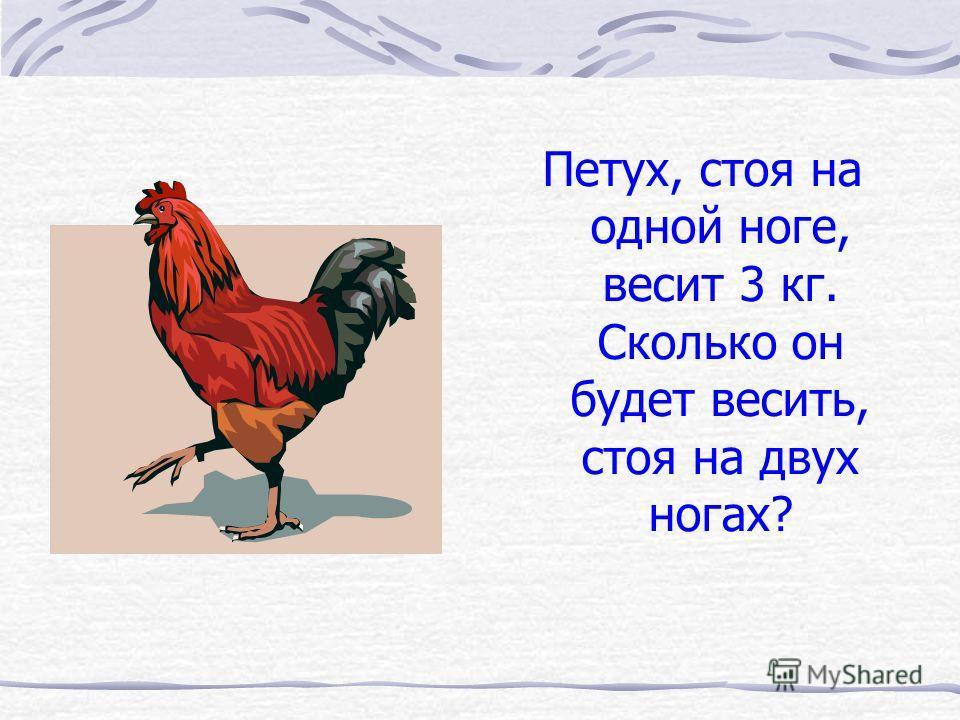 Петух, стоя на одной ноге, весит 3 кг. Сколько он будет весить, стоя на двух ногах?
