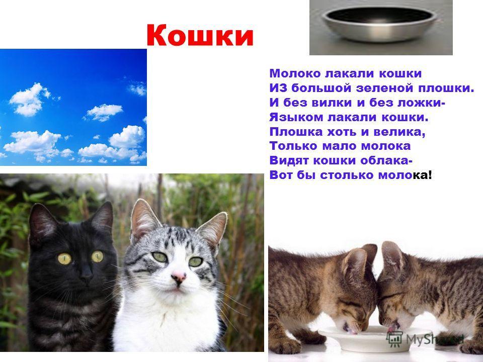 Кошки Молоко лакали кошки ИЗ большой зеленой плошки. И без вилки и без ложки- Языком лакали кошки. Плошка хоть и велика, Только мало молока Видят кошки облака- Вот бы столько молока!