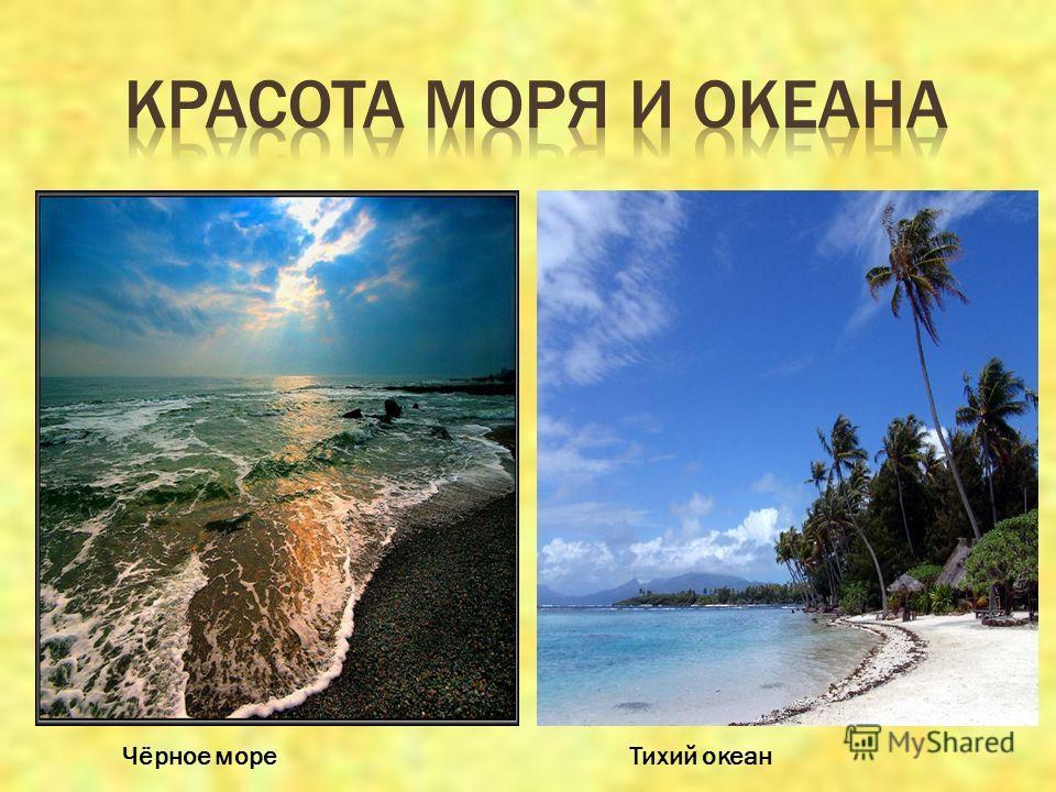 Чёрное мореТихий океан