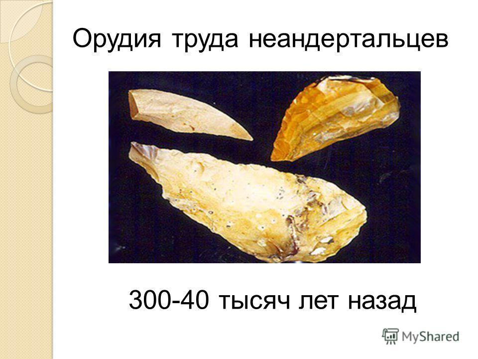 Орудия труда неандертальцев 300-40 тысяч лет назад