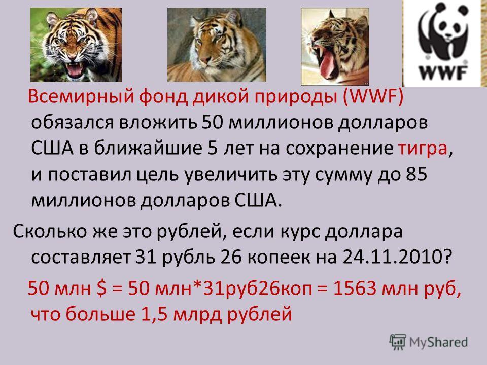Всемирный фонд дикой природы (WWF) обязался вложить 50 миллионов долларов США в ближайшие 5 лет на сохранение тигра, и поставил цель увеличить эту сумму до 85 миллионов долларов США. Сколько же это рублей, если курс доллара составляет 31 рубль 26 коп