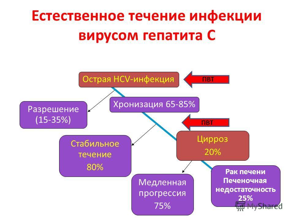 Естественное течение инфекции вирусом гепатита С Стабильное течение 80% Рак печени Печеночная недостаточность 25% Медленная прогрессия 75% Разрешение (15-35%) Острая HCV-инфекция Цирроз 20% Хронизация 65-85% ПВТ