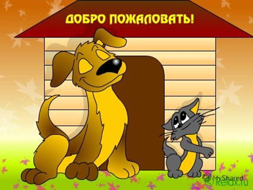 знакомство с учебным комплексом по русскому языку 5 класс