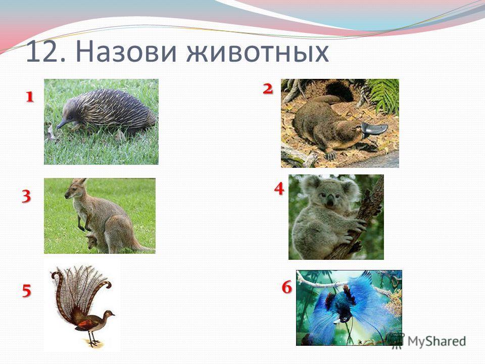 12. Назови животных 1 65 4 3 2