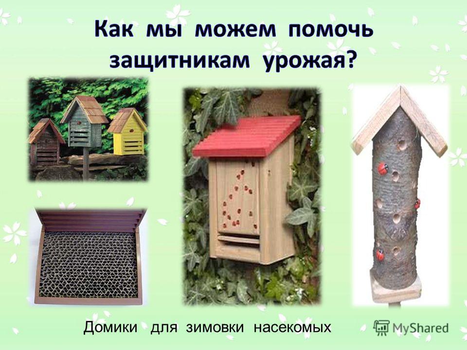 Домики для зимовки насекомых