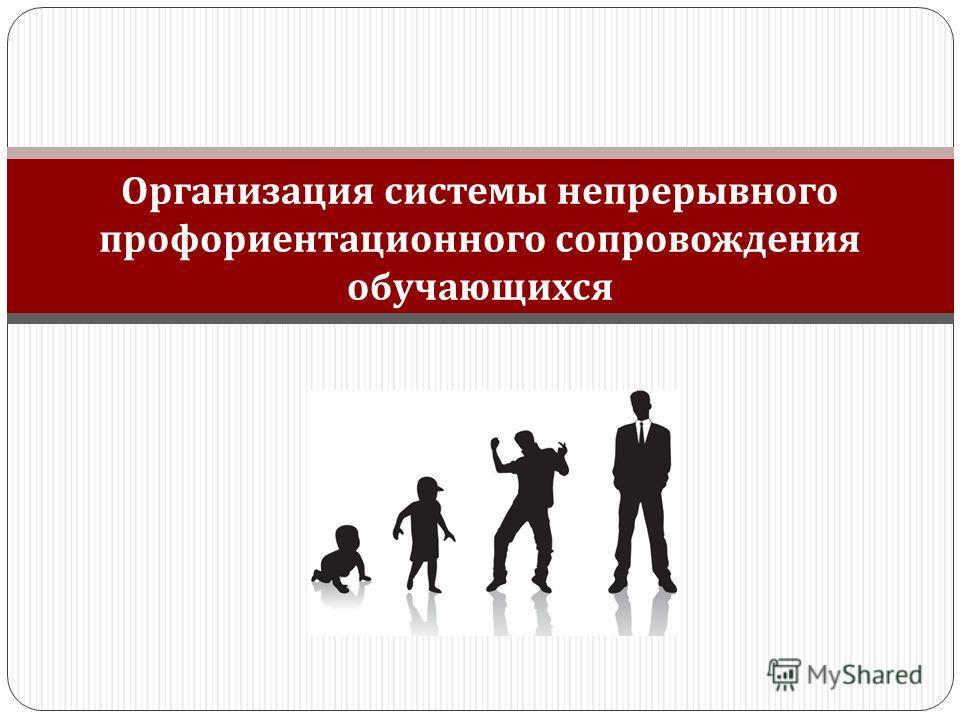 Организация системы непрерывного профориентационного сопровождения обучающихся