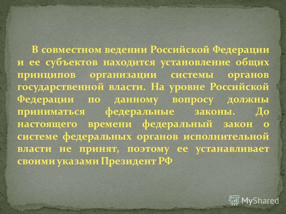 В совместном ведении Российской Федерации и ее субъектов находится установление общих принципов организации системы органов государственной власти. На уровне Российской Федерации по данному вопросу должны приниматься федеральные законы. До настоящего