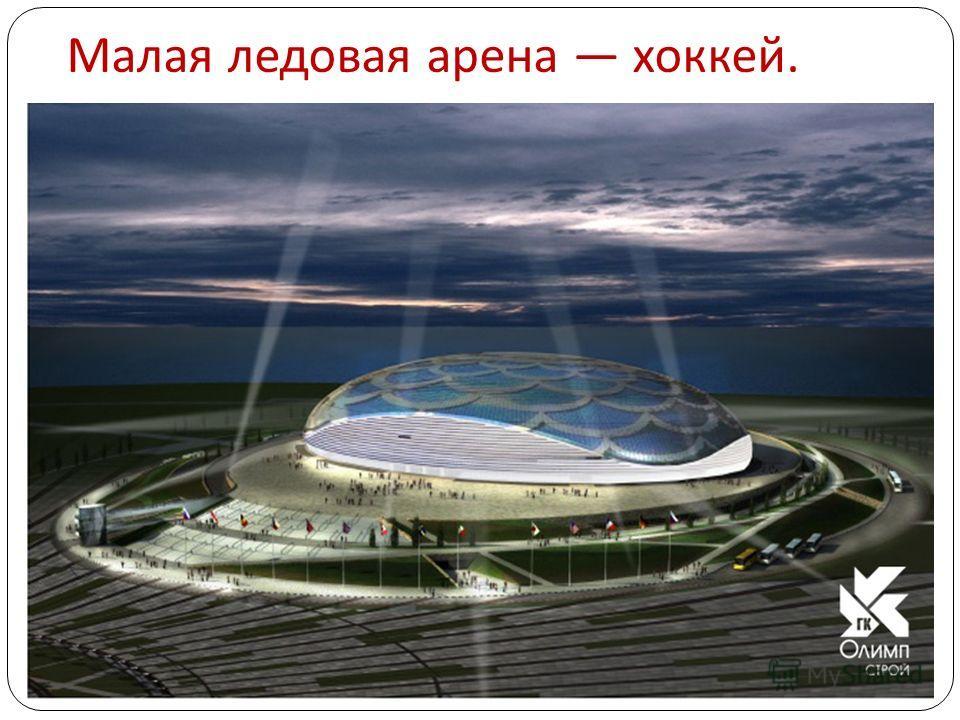 Малая ледовая арена хоккей.
