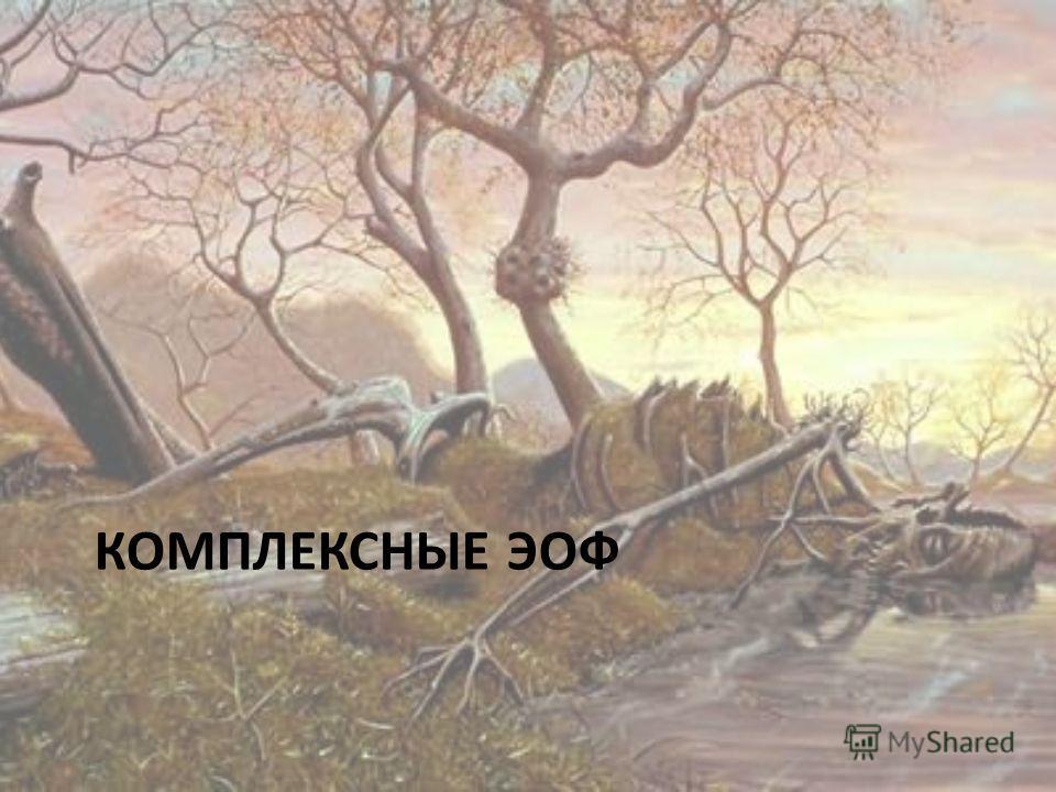 КОМПЛЕКСНЫЕ ЭОФ
