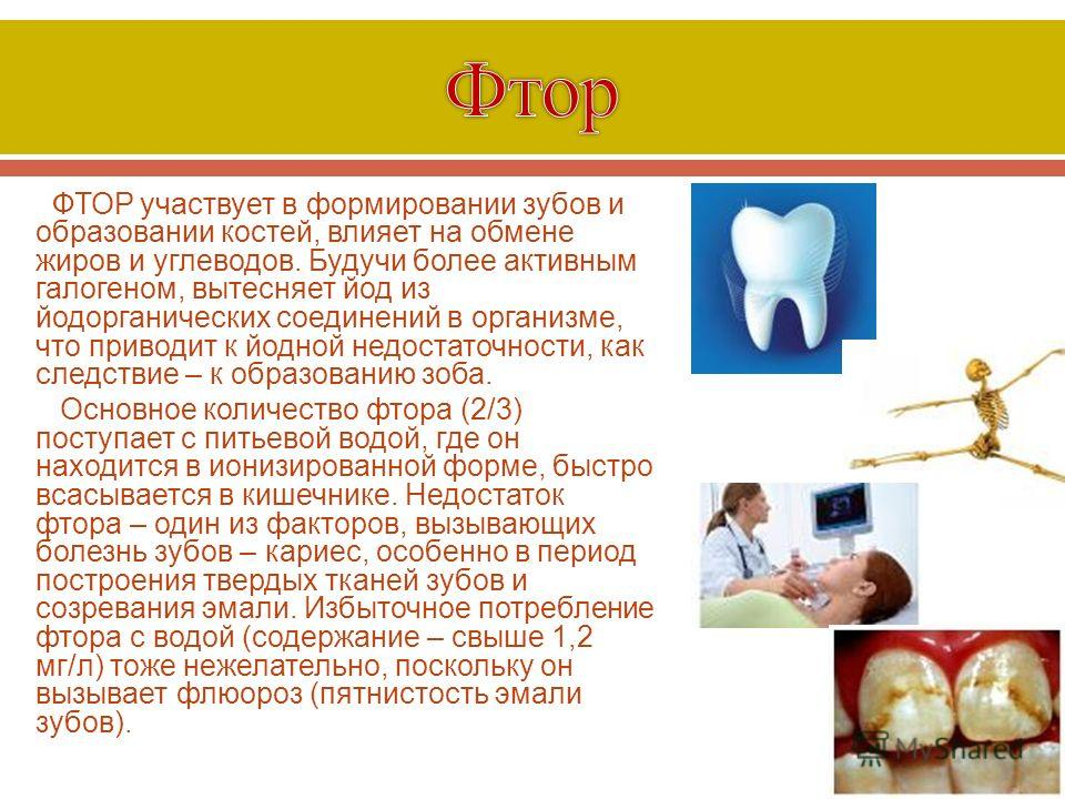 ФТОР участвует в формировании зубов и образовании костей, влияет на обмене жиров и углеводов. Будучи более активным галогеном, вытесняет йод из йодорганических соединений в организме, что приводит к йодной недостаточности, как следствие – к образован
