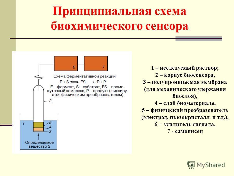 Принципиальная схема биохимического сенсора 1 – исследуемый раствор; 2 – корпус биосенсора, 3 – полупроницаемая мембрана (для механического удержания биослоя), 4 – слой биоматериала, 5 – физический преобразователь (электрод, пьезокристалл и т.д.), 6