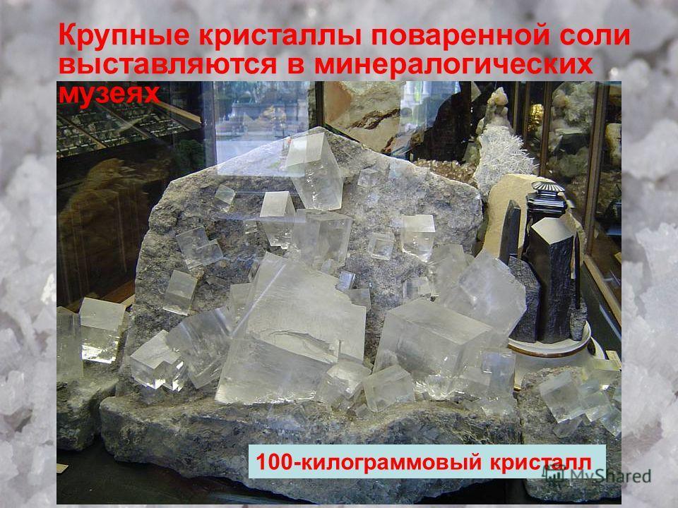 Крупные кристаллы поваренной соли выставляются в минералогических музеях 100-килограммовый кристалл