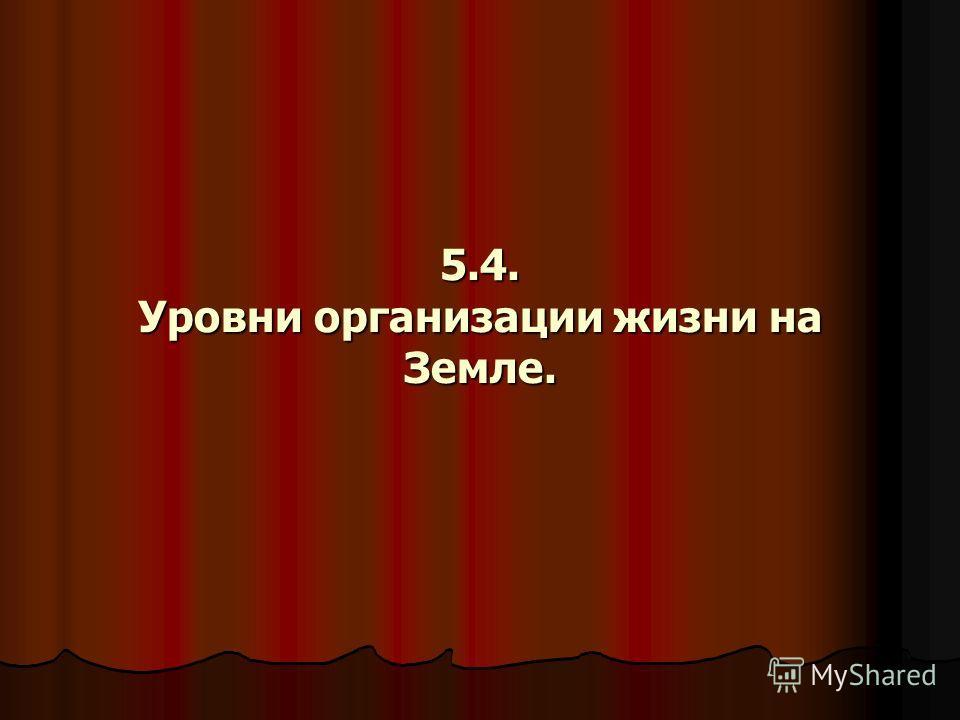 5.4. Уровни организации жизни на Земле.