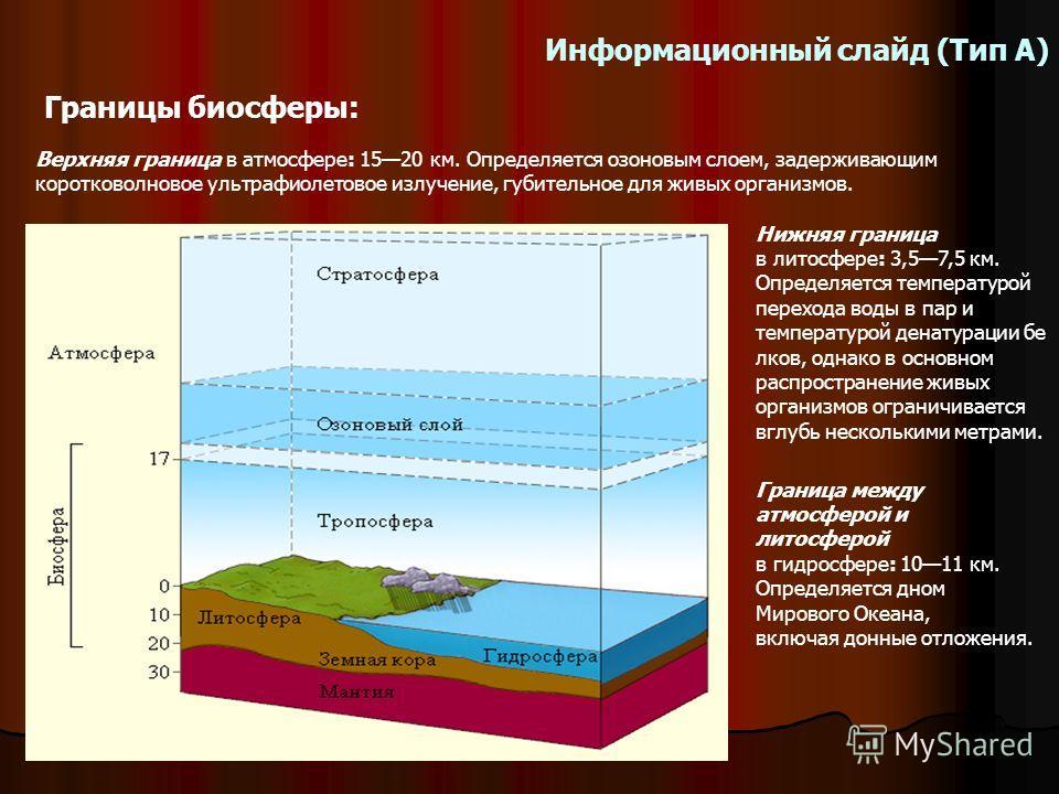 Информационный слайд (Тип А) Границы биосферы: Верхняя граница в атмосфере: 1520 км. Определяется озоновым слоем, задерживающим коротковолновое ультрафиолетовое излучение, губительное для живых организмов. Граница между атмосферой и литосферой в гидр