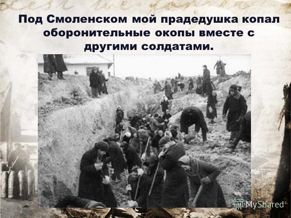 Под Смоленском мой прадедушка копал оборонительные окопы вместе с другими солдатами.