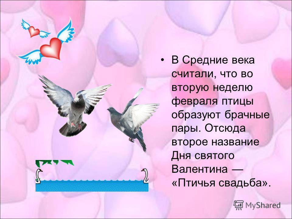 В Средние века считали, что во вторую неделю февраля птицы образуют брачные пары. Отсюда второе название Дня святого Валентина «Птичья свадьба».