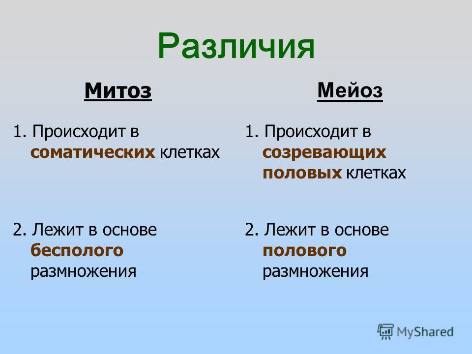 Различия Мейоз Митоз 1. Происходит в соматических клетках 1. Происходит в созревающих половых клетках 2. Лежит в основе бесполого размножения 2. Лежит в основе полового размножения
