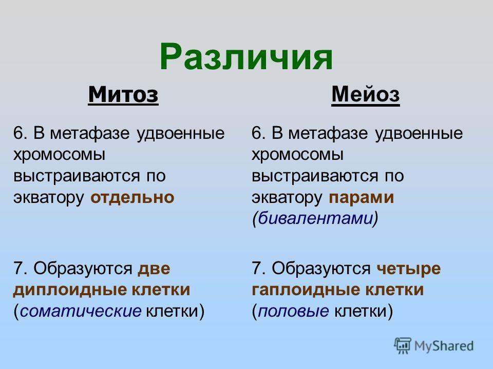 Различия Мейоз Митоз 6. В метафазе удвоенные хромосомы выстраиваются по экватору отдельно 6. В метафазе удвоенные хромосомы выстраиваются по экватору парами (бивалентами) 7. Образуются две диплоидные клетки (соматические клетки) 7. Образуются четыре
