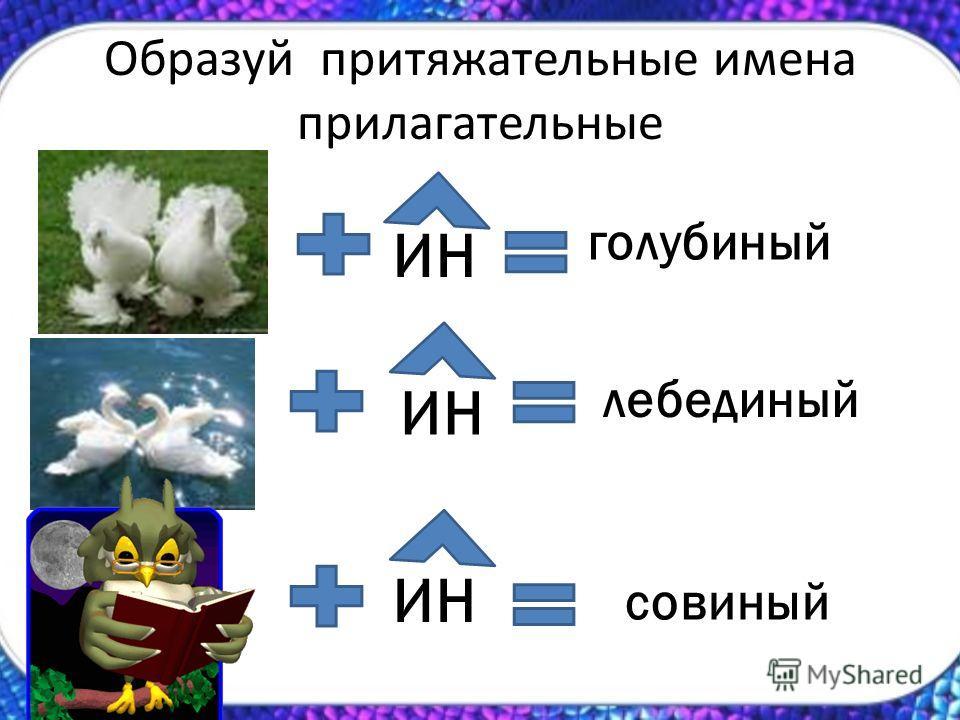 Образуй притяжательные имена прилагательные ИН голубиный лебединый совиный