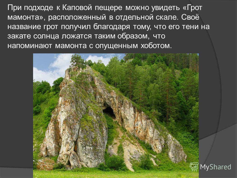 Шульган-таш уникальный природный памятник. Уже на протяжении 50 лет она является не только символом Башкортостана, но и местом паломничества ученых, студентов-историков и многочисленных туристов.
