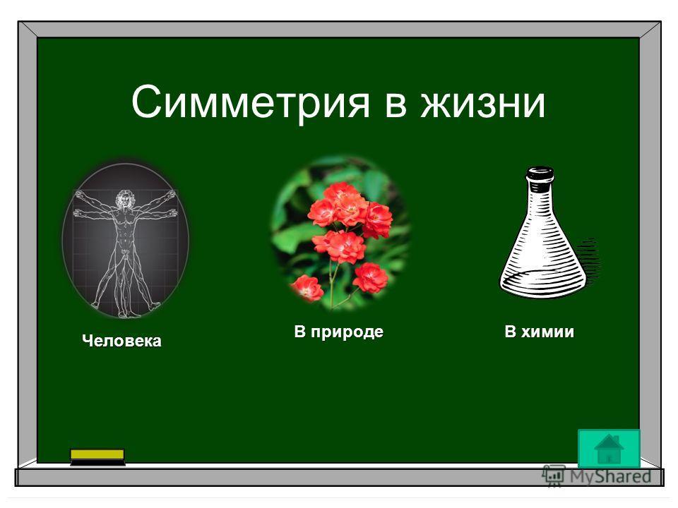 Симметрия в жизни Человека В природе В химии