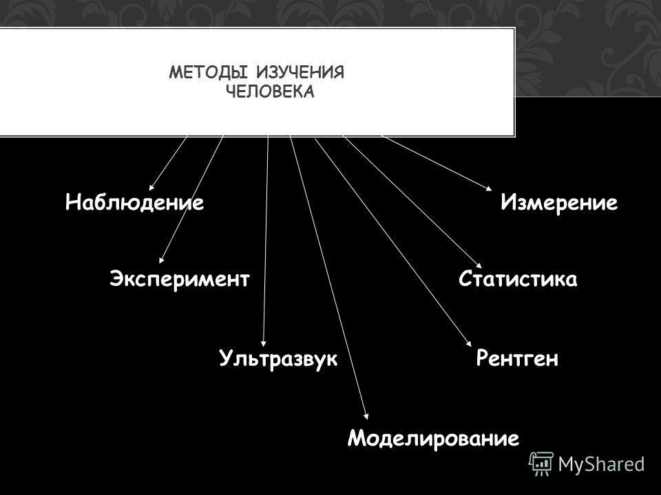 Наблюдение Измерение Эксперимент Статистика Ультразвук Рентген Моделирование МЕТОДЫ ИЗУЧЕНИЯ ЧЕЛОВЕКА