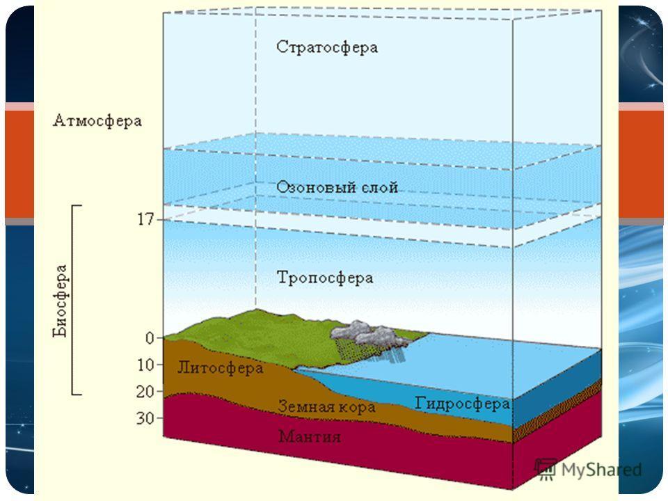 Структура биосферы Биосфера Косное вещество Оно сформировалось без участия живых организмов: вода, гранит, базальт и т.д. Живое вещество – совокупность всех живых организмов на Земле Биогенное вещество – создано в процессе жизнедеятель ности организм