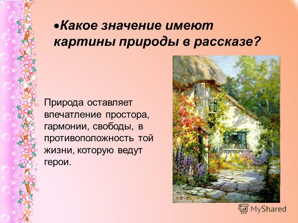 Какое значение имеют картины природы в рассказе? Природа оставляет впечатление простора, гармонии, свободы, в противоположность той жизни, которую ведут герои.