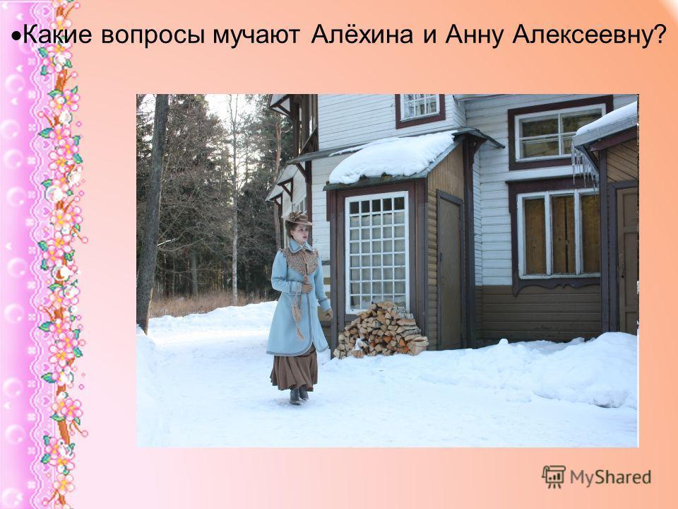 Какие вопросы мучают Алёхина и Анну Алексеевну?