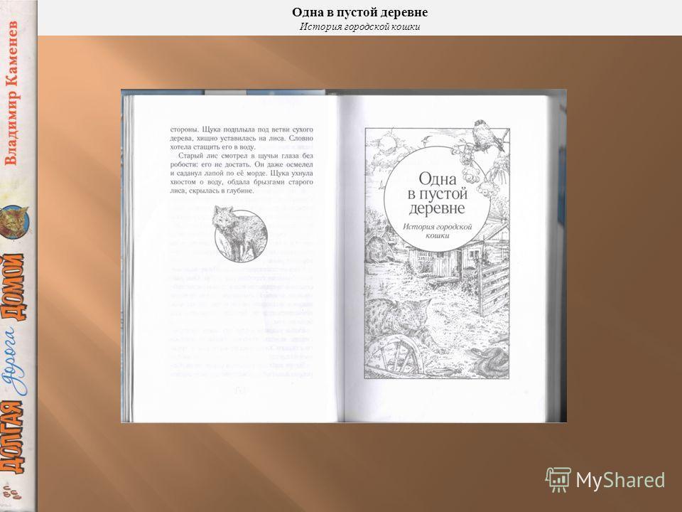 Эту историю пересказал писатель Владимир Каменев и назвал её «Одна в пустой деревне. История городской кошки »