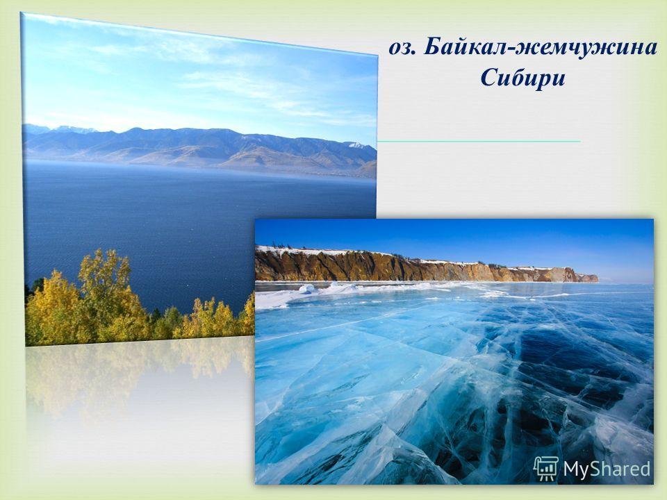 оз. Байкал - жемчужина Сибири