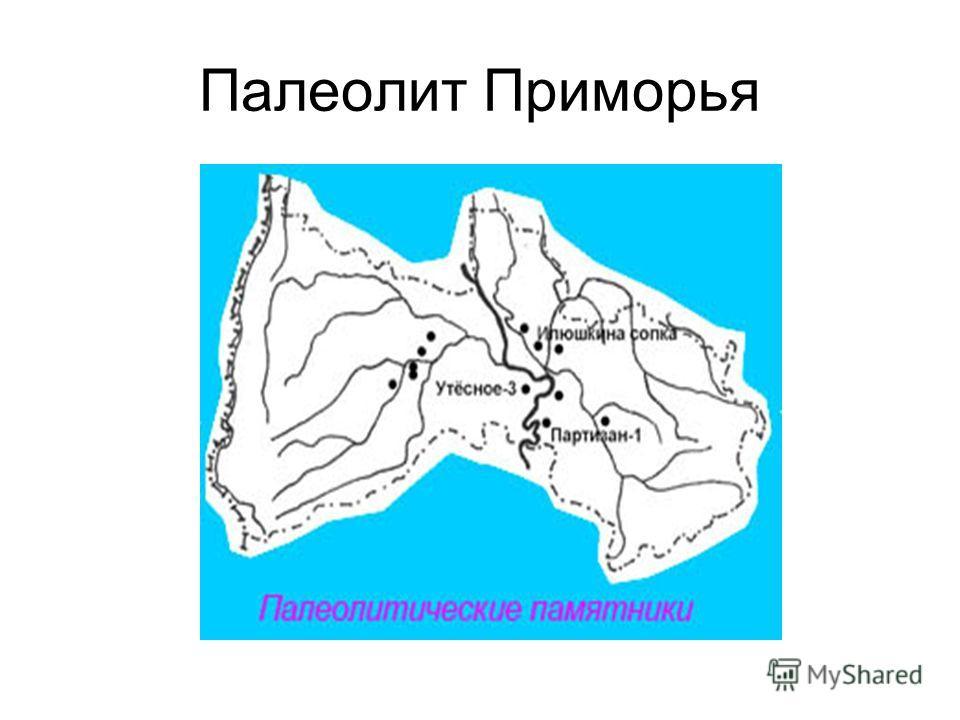 Палеолит Приморья