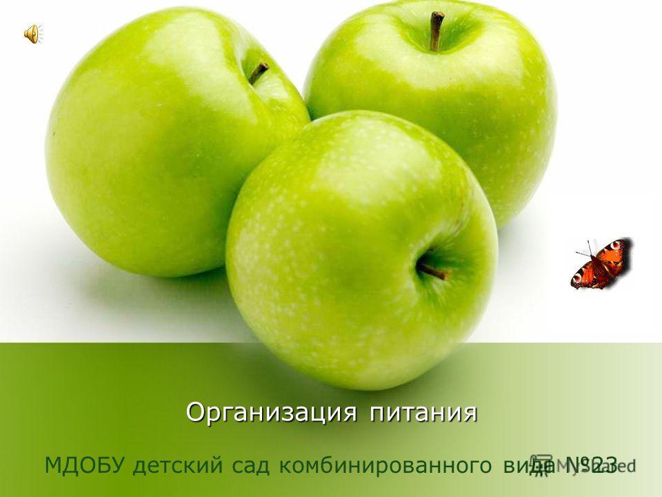 Организация питания МДОБУ детский сад комбинированного вида 23