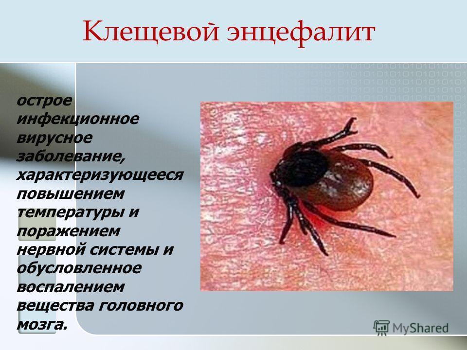 Клещевой энцефалит лечится