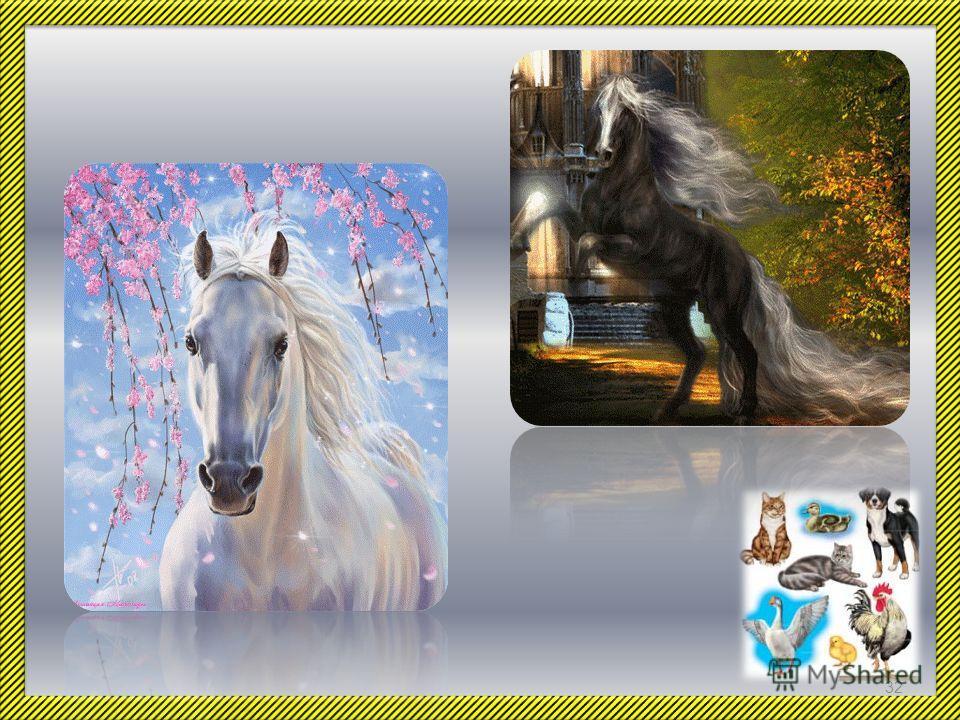 И конечно, как и раньше, люди не перестают восхищаться красотой лошадей. 31