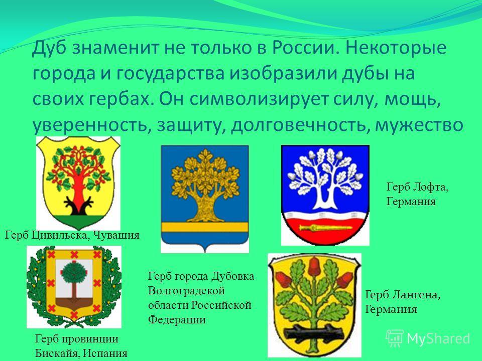 Дуб знаменит не только в России. Некоторые города и государства изобразили дубы на своих гербах. Он символизирует силу, мощь, уверенность, защиту, долговечность, мужество Герб Лангена, Германия Герб Цивильска, Чувашия Герб Лофта, Германия Герб города