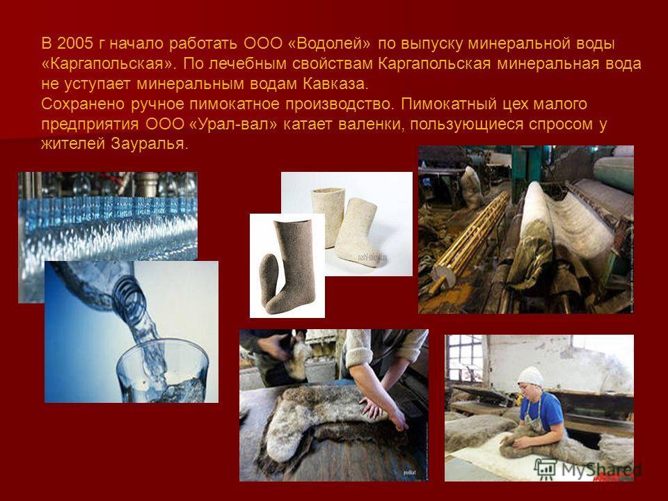 В 2005 г начало работать ООО «Водолей» по выпуску минеральной воды «Каргапольская». По лечебным свойствам Каргапольская минеральная вода не уступает минеральным водам Кавказа. Сохранено ручное пимокатное производство. Пимокатный цех малого предприяти