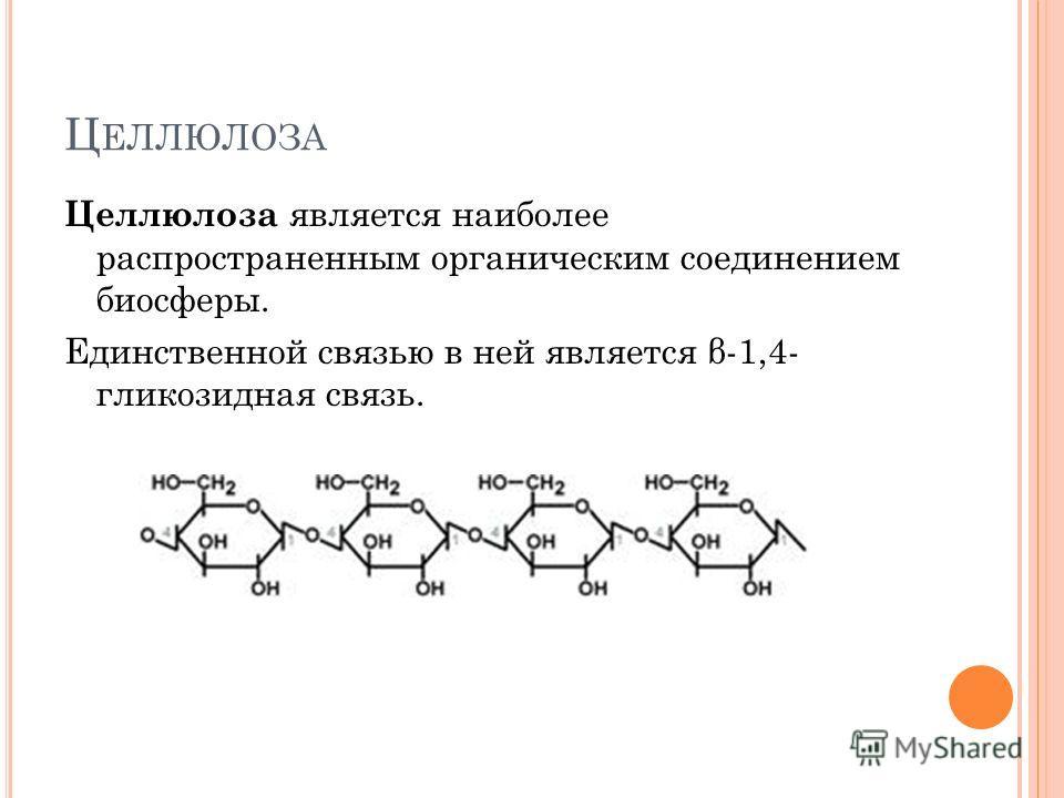 Ц ЕЛЛЮЛОЗА Целлюлоза является наиболее распространенным органическим соединением биосферы. Единственной связью в ней является β-1,4- гликозидная связь.