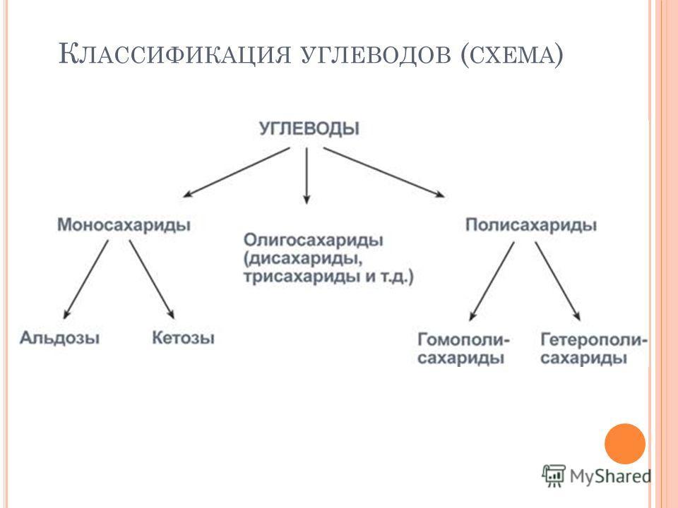 К ЛАССИФИКАЦИЯ УГЛЕВОДОВ ( СХЕМА )