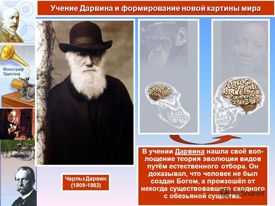 В учении Дарвина нашла своё воп- лощение теория эволюции видов путём естественного отбора. Он доказывал, что человек не был создан Богом, а произошёл от некогда существовавшего сходного с обезьяной существа. Учение Дарвина и формирование новой картин