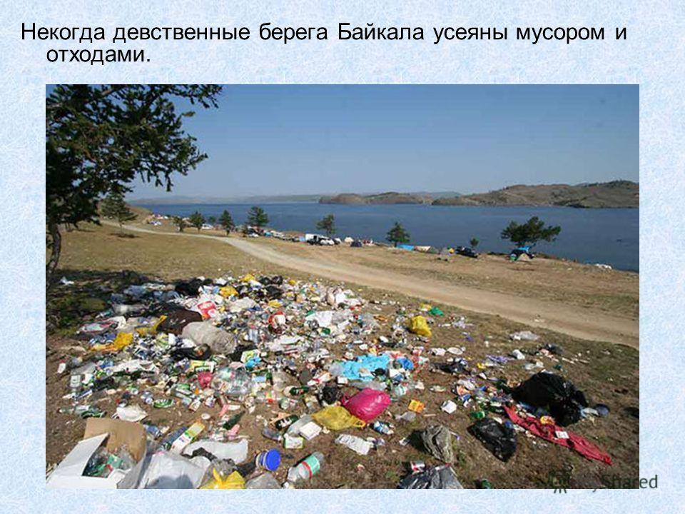 Некогда девственные берега Байкала усеяны мусором и отходами.