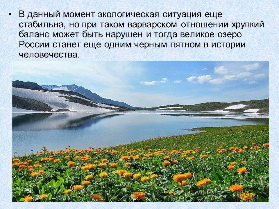 В данный момент экологическая ситуация еще стабильна, но при таком варварском отношении хрупкий баланс может быть нарушен и тогда великое озеро России станет еще одним черным пятном в истории человечества.