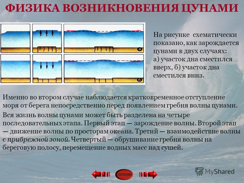 На рисунке схематически показано, как зарождается цунами в двух случаях: а) участок дна сместился вверх, б) участок дна сместился вниз. Именно во втором случае наблюдается кратковременное отступление моря от берега непосредственно перед появлением гр