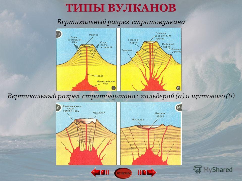 Вертикальный разрез стратовулкана с кальдерой (а) и щитового (б) Вертикальный разрез стратовулкана ТИПЫ ВУЛКАНОВ
