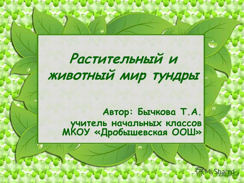 Растительный и животный мир тундры Автор: Бычкова Т.А. учитель начальных классов МКОУ «Дробышевская ООШ»